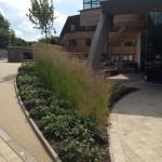 Durham University  (2)