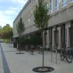 Durham University (3)