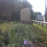 Eldon Village Community Area (6)