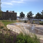 Soft Landscaping at Harton Quays Park, Sustain Landscapes Limited